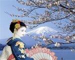 Celebrity Milennium - Japan für Entdecker