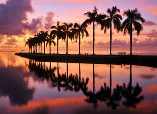Hotel Doubletree Hotel & Miami Airport Convention Center Landschaft