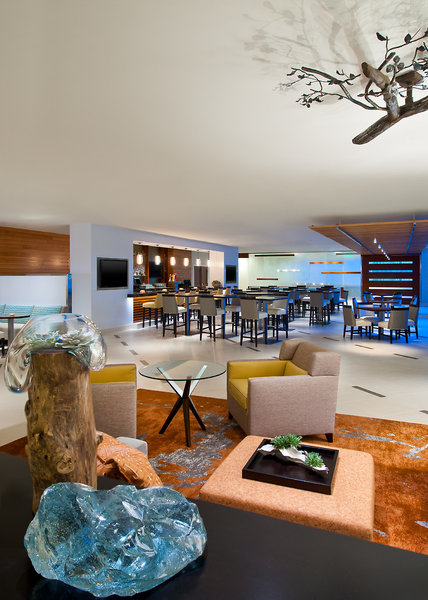 Sheraton Dallas Bar