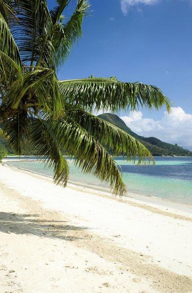 Indian Ocean LodgeStrand