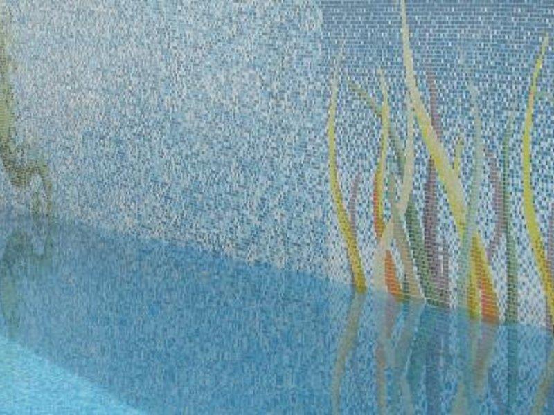 Hippocampe Pool