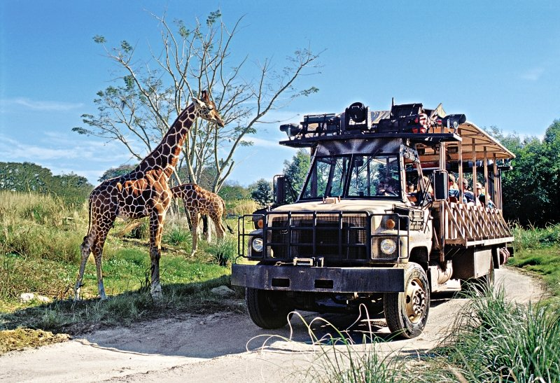 Disney´s Animal Kingdom Lodge Sport und Freizeit