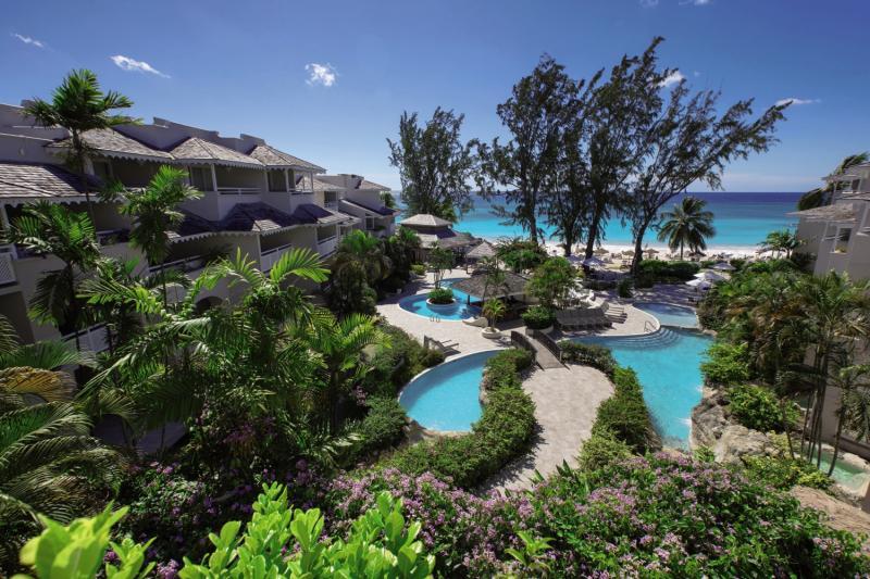 Bougainvillea Barbados Außenaufnahme