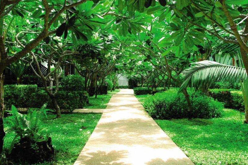 Banana Fan Sea Resort Garten
